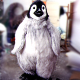 寫實動物 Realistic Animal 企鵝 Penguin Suit (TVC)