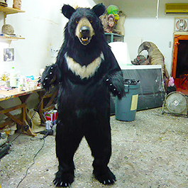 黑熊 Taiwanese Black Bear Suit