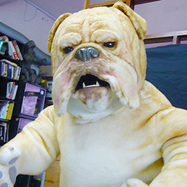 遙控機械鬥牛犬道具服 Animatronic bull dog costume (TVC)